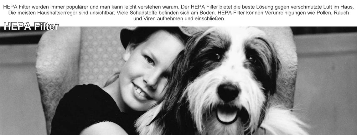 hepa2-2